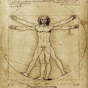 el-hombre-de-vitruo-canon-del-cuerpo-humano2